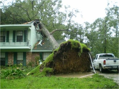 A Guide to Understanding Homeowners Insurance